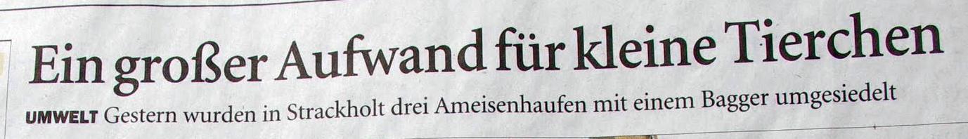 Schlagzeile Ostfriesen Zeitung