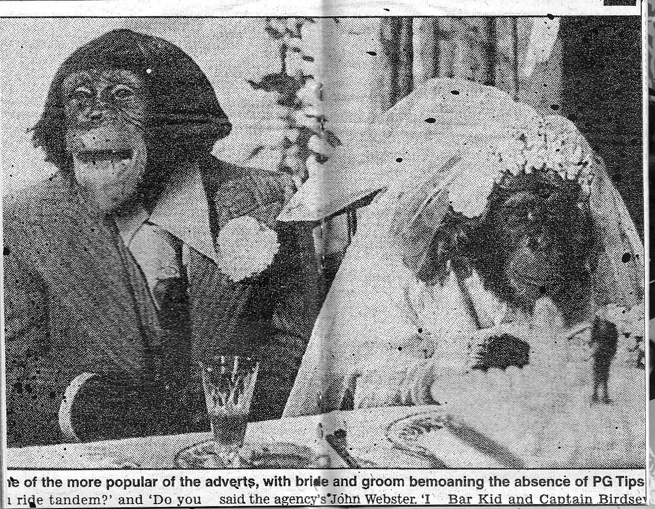 Apes do a marriage