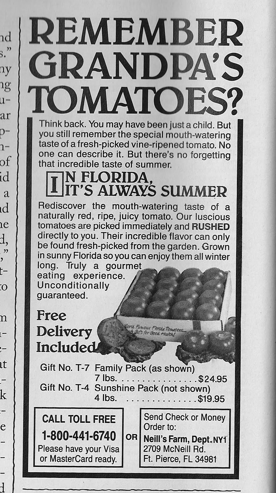 Werbung Tomaten aus Florida 1993