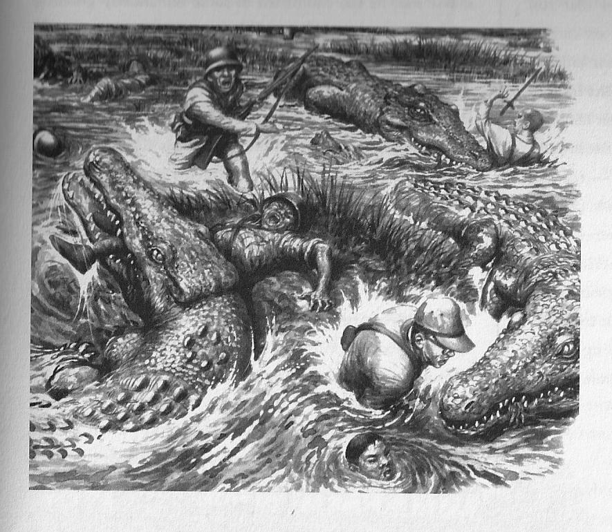 Krokodilangriff Der Freund 8
